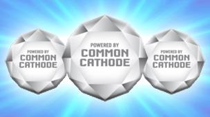 2 Common Cathode 1 304х170
